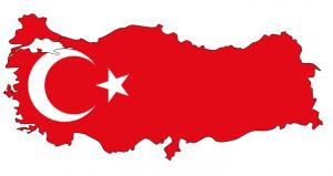 Бизнес в Турции
