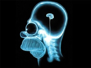 умственная деятельность человека