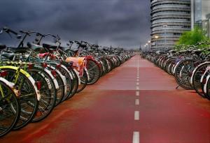 Бизнес прокат велосипеды