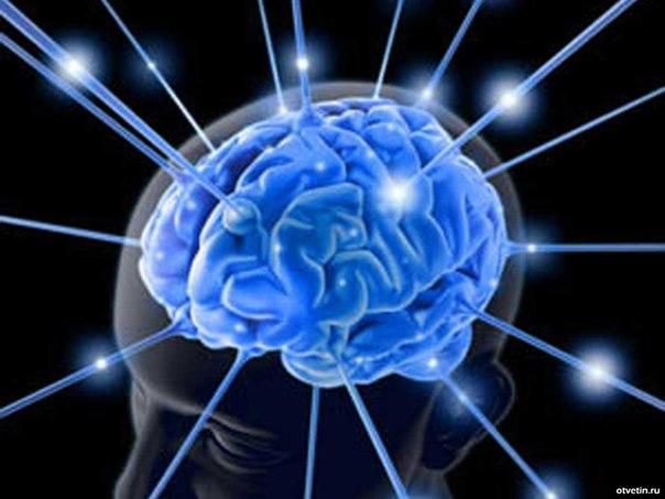 Способность мыслить - наш дар, который нужно использовать