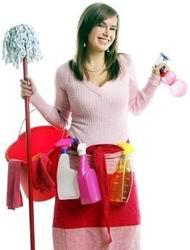 Все любят чистоту, или как открыть клининговую компанию