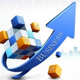 Бизнес и его развитие и перспективные направления