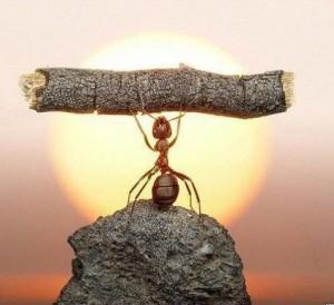 Успех в жизни и психология