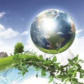 Безопасный экологический бизнес  - экспертиза