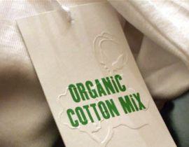 экологическая одежда