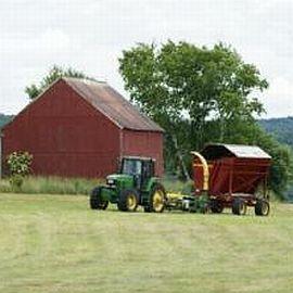 сельские бизнес идеи