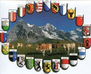 Щвейцарский бизнес