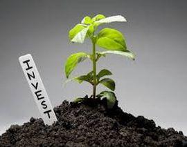 Как найти инвестора для роста бизнеса