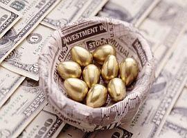 поиск инвестора золотые яйца