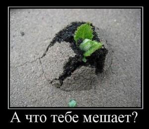 PpMM_Om8EeI