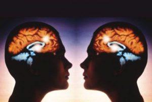 зеркальные нейроны - отражение