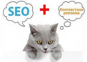 seo контекстная реклама с котами
