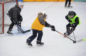 Зимний бизнес на игре в хоккей