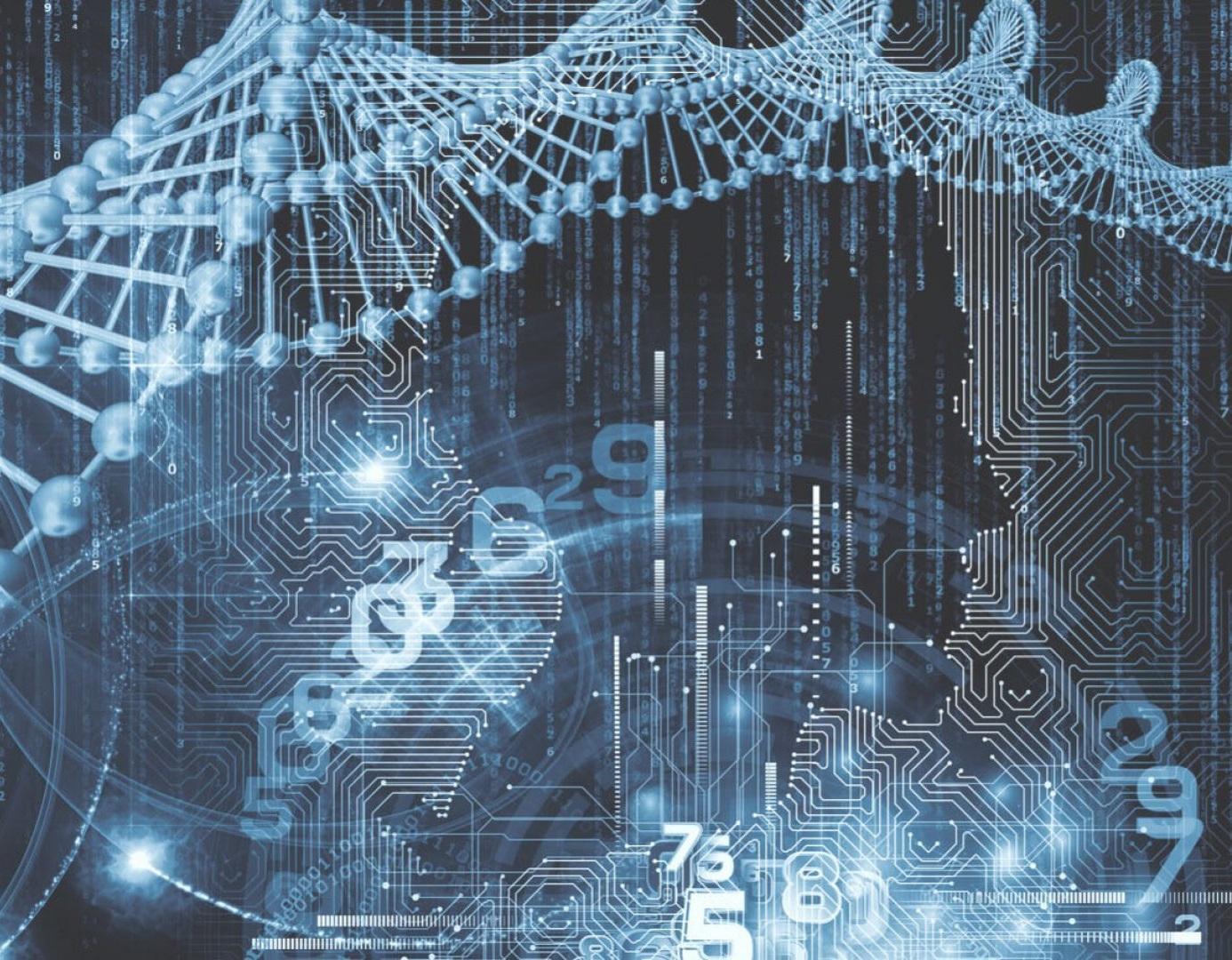 контор нейронные сети букмекерских